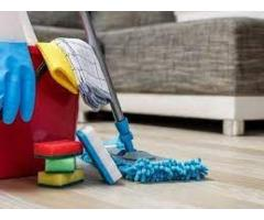 Domestic Cleaners in Auckland